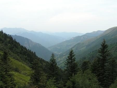 Etude sur la desserte forestière en zone de montagne : donnez votre avis avant le 11 août !